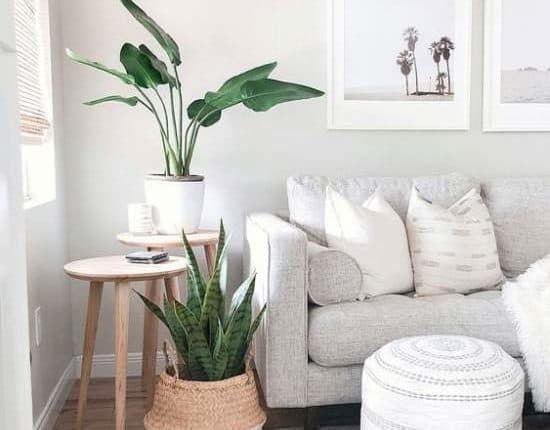 coastal-interior design style
