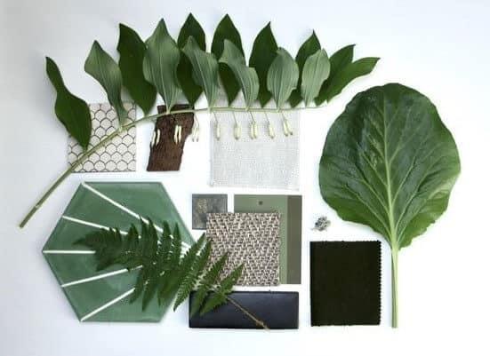 biophilic-interior-design-moodboard